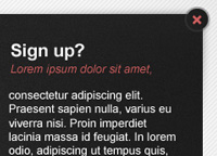 Login Signup Web Element